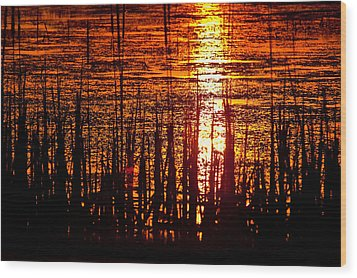 Horicon Marsh Sunset Wisconsin Wood Print by Steve Gadomski