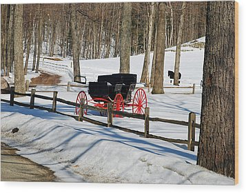 Wood Print featuring the photograph Horse And Buggy - No Work Today by Janice Adomeit