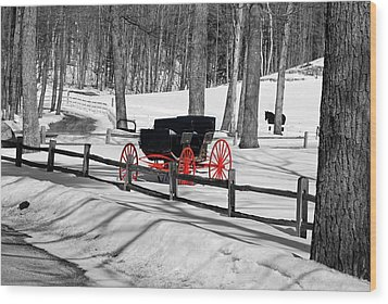 Wood Print featuring the photograph Horse And Buggy - No Work Today No. 2 by Janice Adomeit
