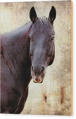 Wood Print featuring the photograph Horse  by Anna Rumiantseva