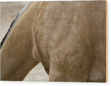 Wood Print featuring the photograph Horse Bending Neck by Lorraine Devon Wilke