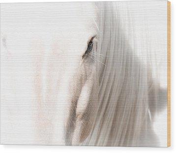 Horse Glow Wood Print by Toni Thomas
