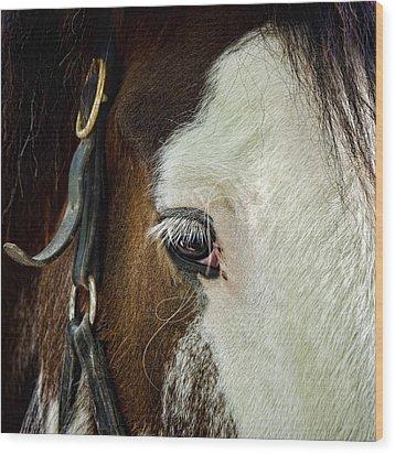 Horse Wood Print by Jana Smith