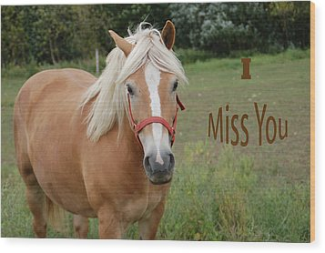 Horse Miss You Wood Print by Aimee L Maher Photography and Art Visit ALMGallerydotcom