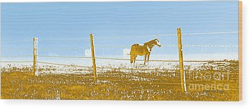Horse Pasture Revblue Wood Print by Paulette B Wright