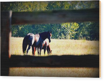 Wood Print featuring the photograph Horse Photography by Peggy Franz
