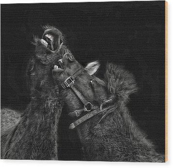 Horse Play Wood Print by Pat Abbott