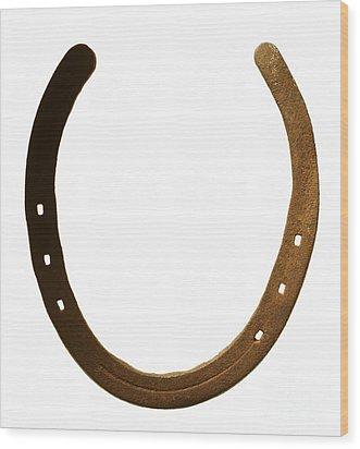 Horse Shoe Wood Print by Tony Cordoza