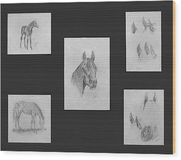 Wood Print featuring the painting Horse Study by Alethea McKee