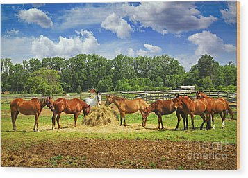 Horses At The Ranch Wood Print by Elena Elisseeva