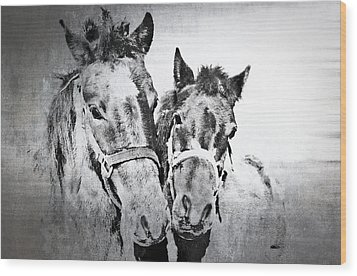 Horses By The Road Wood Print by Kathy Jennings