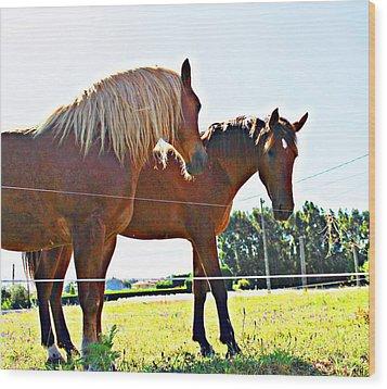 Horses Wood Print by Jenny Senra Pampin