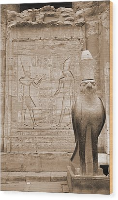 Horus Temple Wood Print by Donna Corless