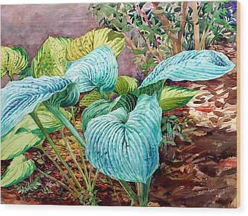 Hosta Wood Print by Peter Sit