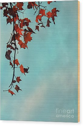 Hot And Cold Wood Print by Aimelle
