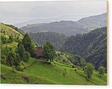 House In The Apuseni Mountains Wood Print by Emanuel Tanjala