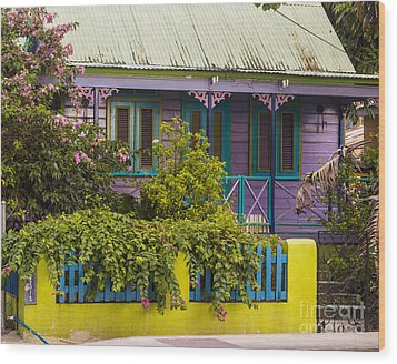 House Of Colors Wood Print by Rene Triay Photography