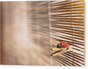 House Of The Rising Ladybug Wood Print by Máté Makarész