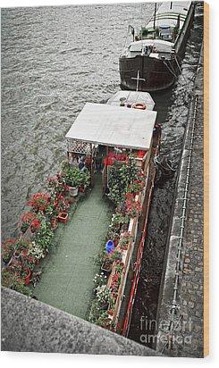 Houseboats In Paris Wood Print by Elena Elisseeva