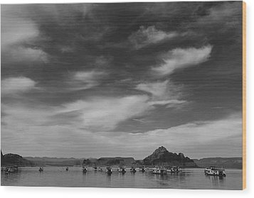 Houseboats On Lake Powell Wood Print by Andrew Soundarajan