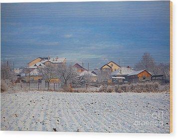 Houses In Winter Wood Print by Gabriela Insuratelu