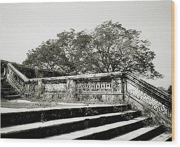 Hue  Wood Print by Shaun Higson