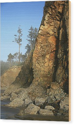 Hug Point Outcrop Wood Print by Steven A Bash