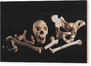 Human Fossils, Sima De Los Huesos Wood Print by Javier Truebamsf