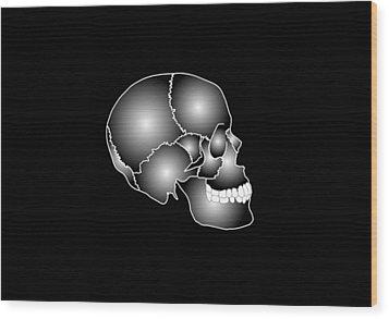 Human Skull Anatomy, Artwork Wood Print by Francis Leroy, Biocosmos