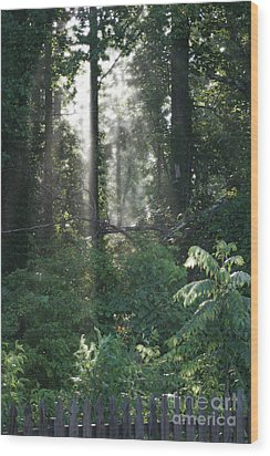 Humid Wood Print by Cris Hayes