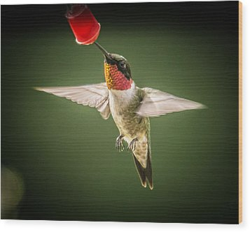 Hummers In The Garden Four Wood Print by Michael Putnam