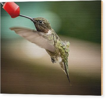 Hummers In The Garden Three Wood Print by Michael Putnam