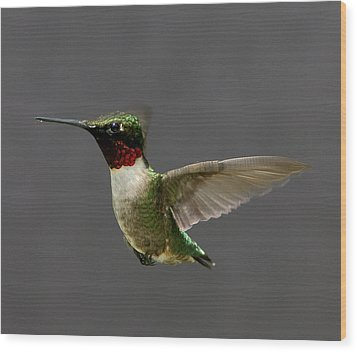 Wood Print featuring the photograph Hummingbird 1 by John Crothers