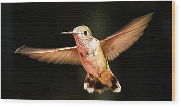 Wood Print featuring the photograph Hummingbird  by Albert Seger