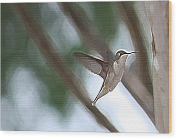 Wood Print featuring the photograph Hummingbird by Donna  Smith