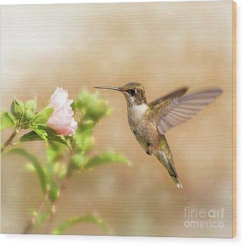 Hummingbird Hovering Wood Print by Sari ONeal