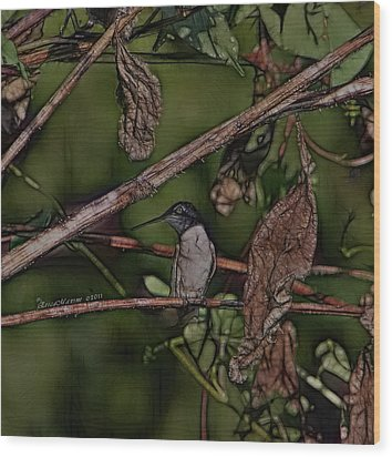 Wood Print featuring the photograph Hummingbird Waiting For Dinner by EricaMaxine  Price