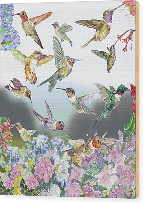 Hummingbirds Galore Wood Print by Barry Jones