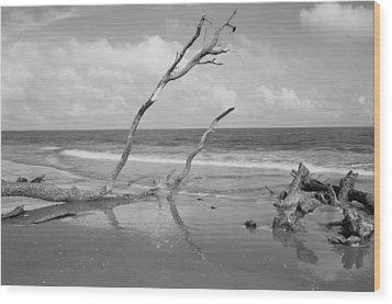 Hunting Island State Park Wood Print by Donnie Smith