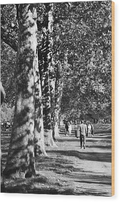 Wood Print featuring the photograph Hyde Park Trees by Maj Seda