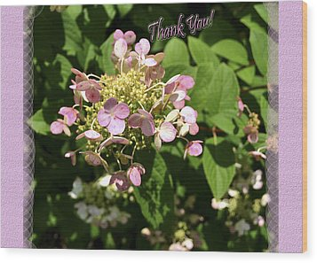 Hydrangea Thank You Wood Print by Larry Bishop