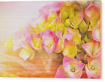 Hydrangeas In Bloom Wood Print by Elaine Manley
