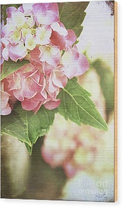 Hydrangeas Wood Print by Stephanie Frey