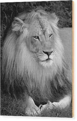 Wood Print featuring the photograph I Am King by Renee Hardison