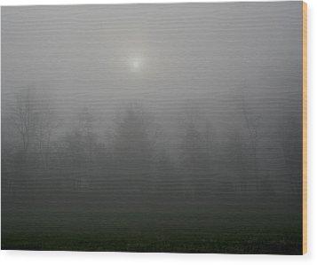 I Awoke In A Dream Wood Print