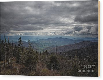 I Can See For Miles Wood Print by Ronald Lutz
