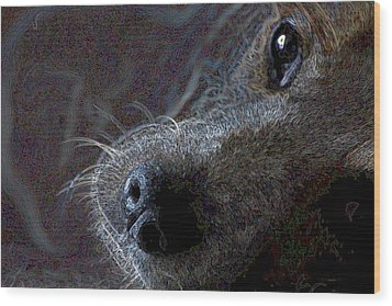 I See You Wood Print by One Rude Dawg Orcutt