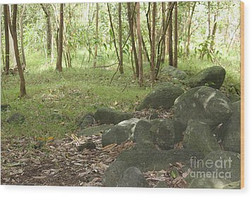 Iao Valley Forest Walk Wood Print