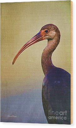 Ibis Nature Pose Wood Print by Deborah Benoit