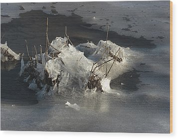 Ice And Salt Marsh Grasses Wood Print by George Grall
